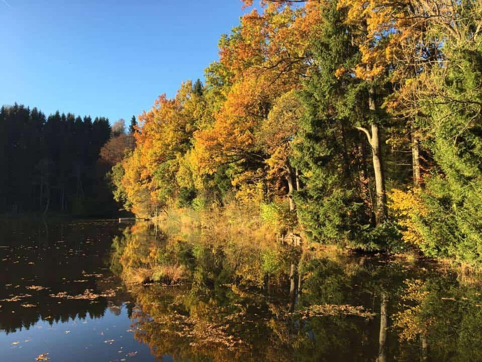 Landhaus König   Landschaft Herbst